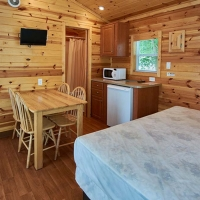 inside of cabin with kitchen area and bed